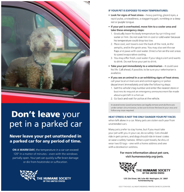???? Don't Leave Your Pet In A Locked Car. ????